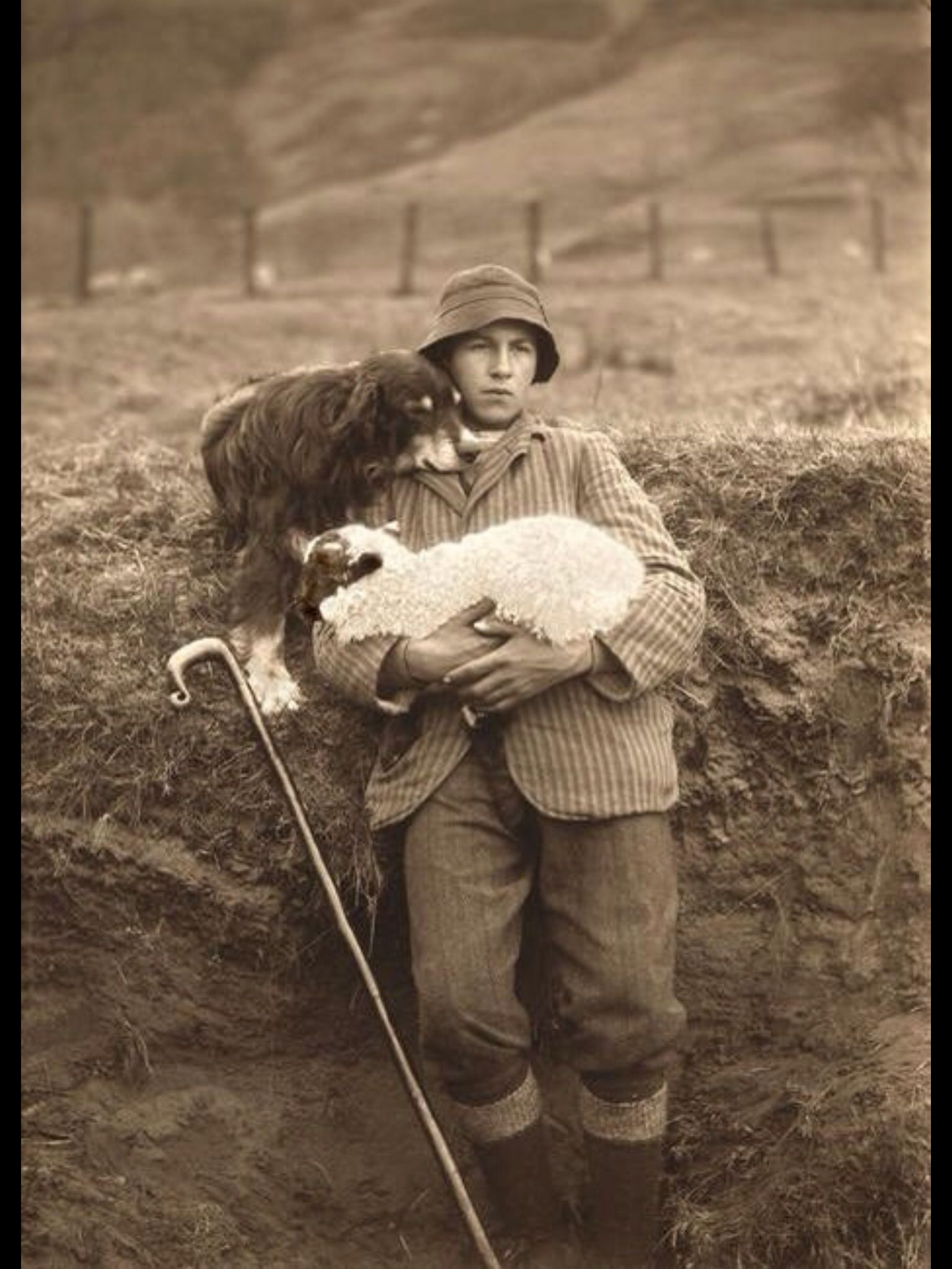 Heartwarming Vintage Photo Of A Shepherd Holding A Lamb -8311