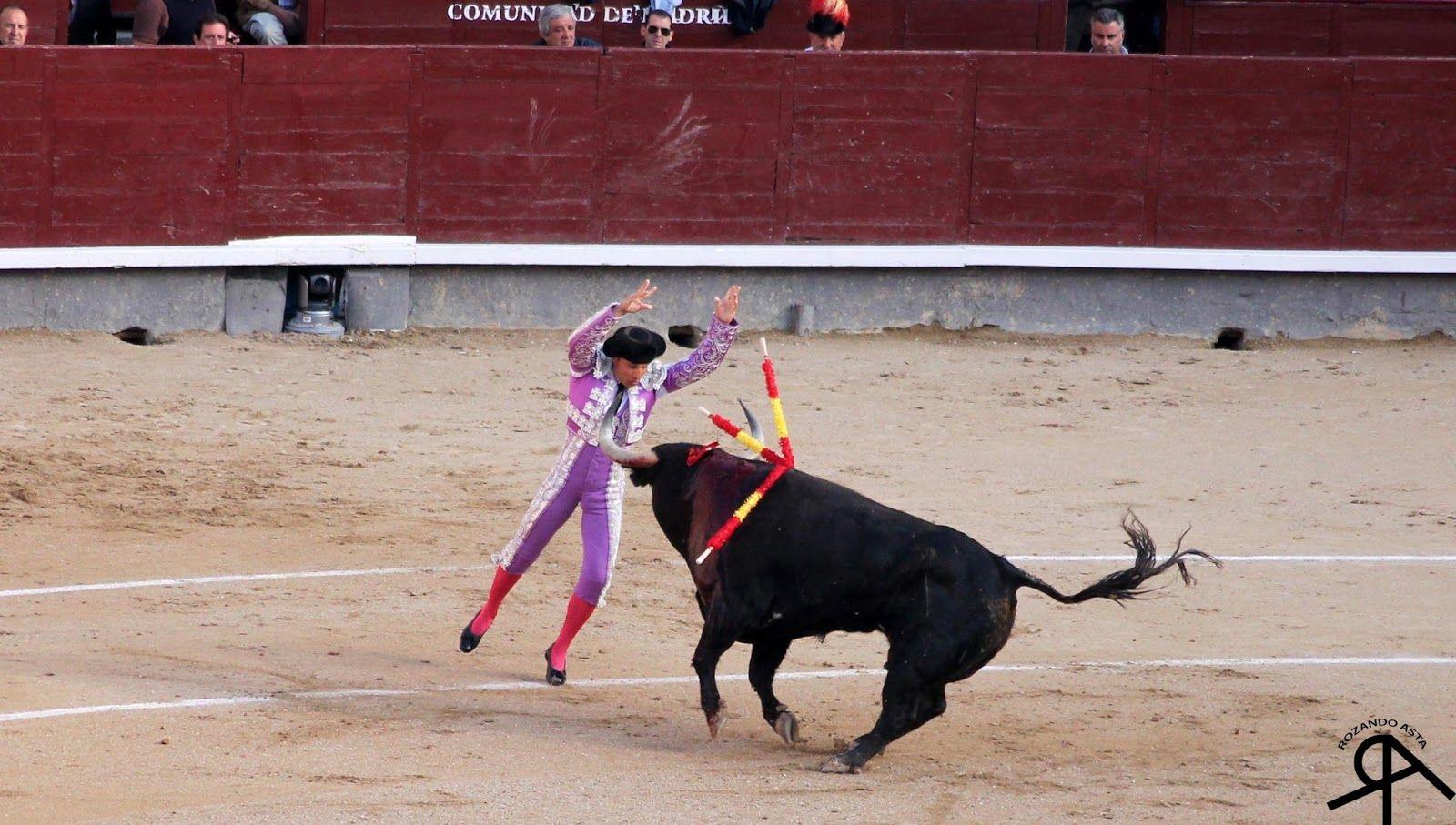 ROZANDO ASTA: Las Ventas, 22 de Mayo de 2013