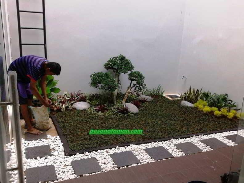 Desain Taman Minimalis Depan Rumah PLANTAS