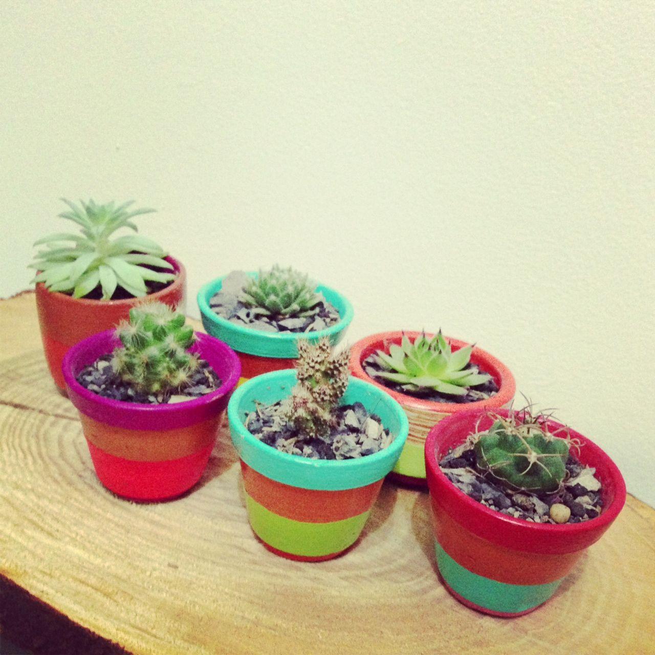 Cactil Cactus Land  Cerámica de Ráquira  Estampado a mano  Bogotá, Colombia