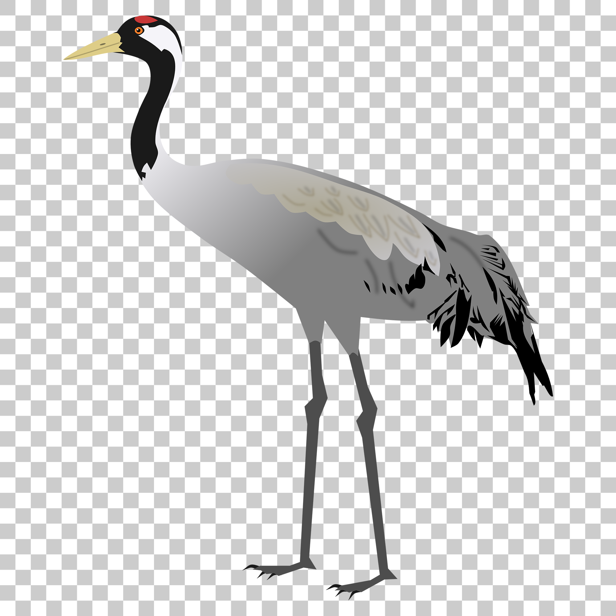 Crane Stork Bird Png Image With Transparent Background Bird Stork Bird Png Images