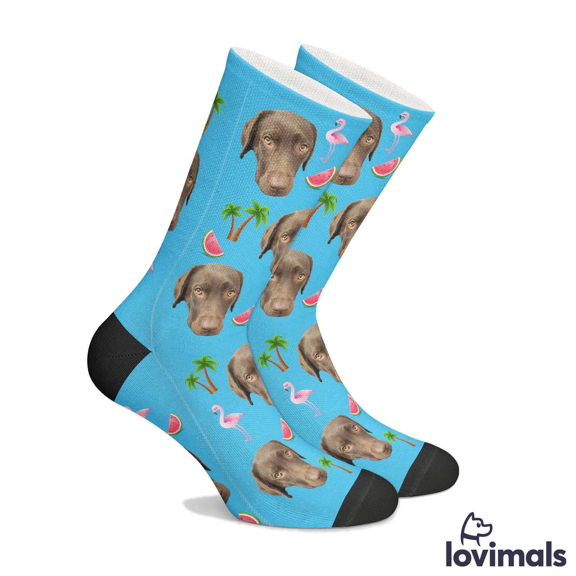 Customizable Dog Socks (With images) Dog socks