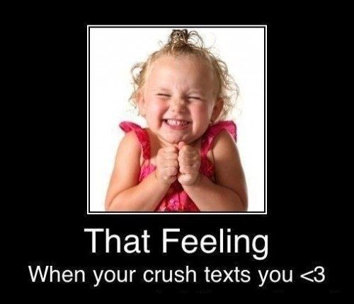 Contact Support Crush Texts Funny Crush Memes Funny Texts Crush