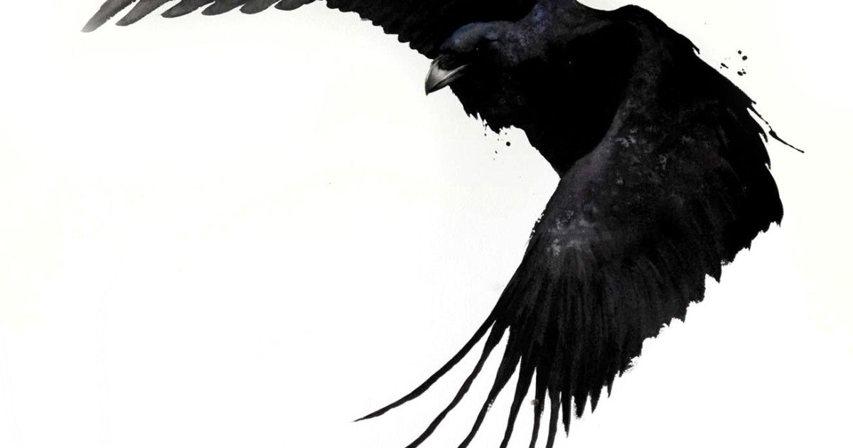 Karl Martens Raven II Signed Watercolour on paper 59 x 39 1/2 in 149.9 x 100.3 cms