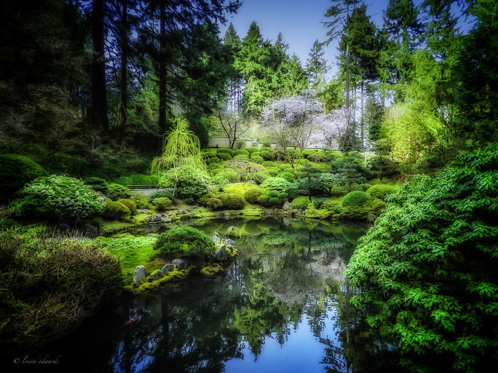 Photo of the Day April 11, 2012 Portland japanese