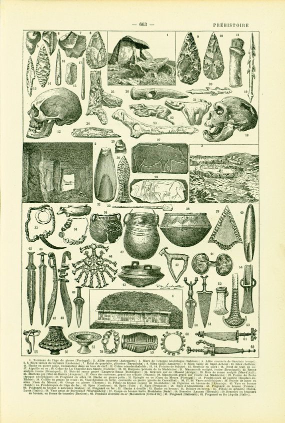 1897 Paleontology Antique Print French Larousse Early 20th