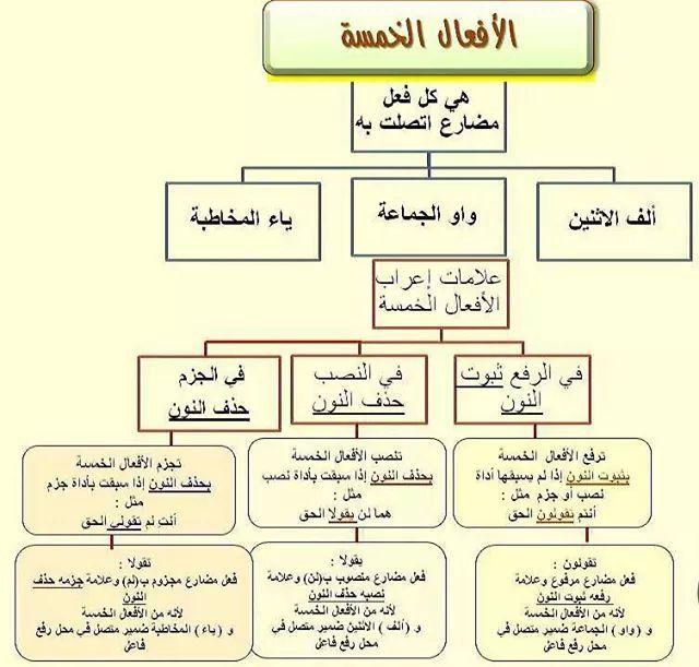 الافعال الخمسة ٢ Learn Arabic Language Arabic Language Learning Arabic