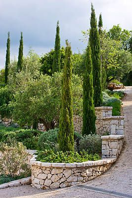Pin By Akelei On The Garden Mediterranean Landscaping Italian Garden Steep Gardens
