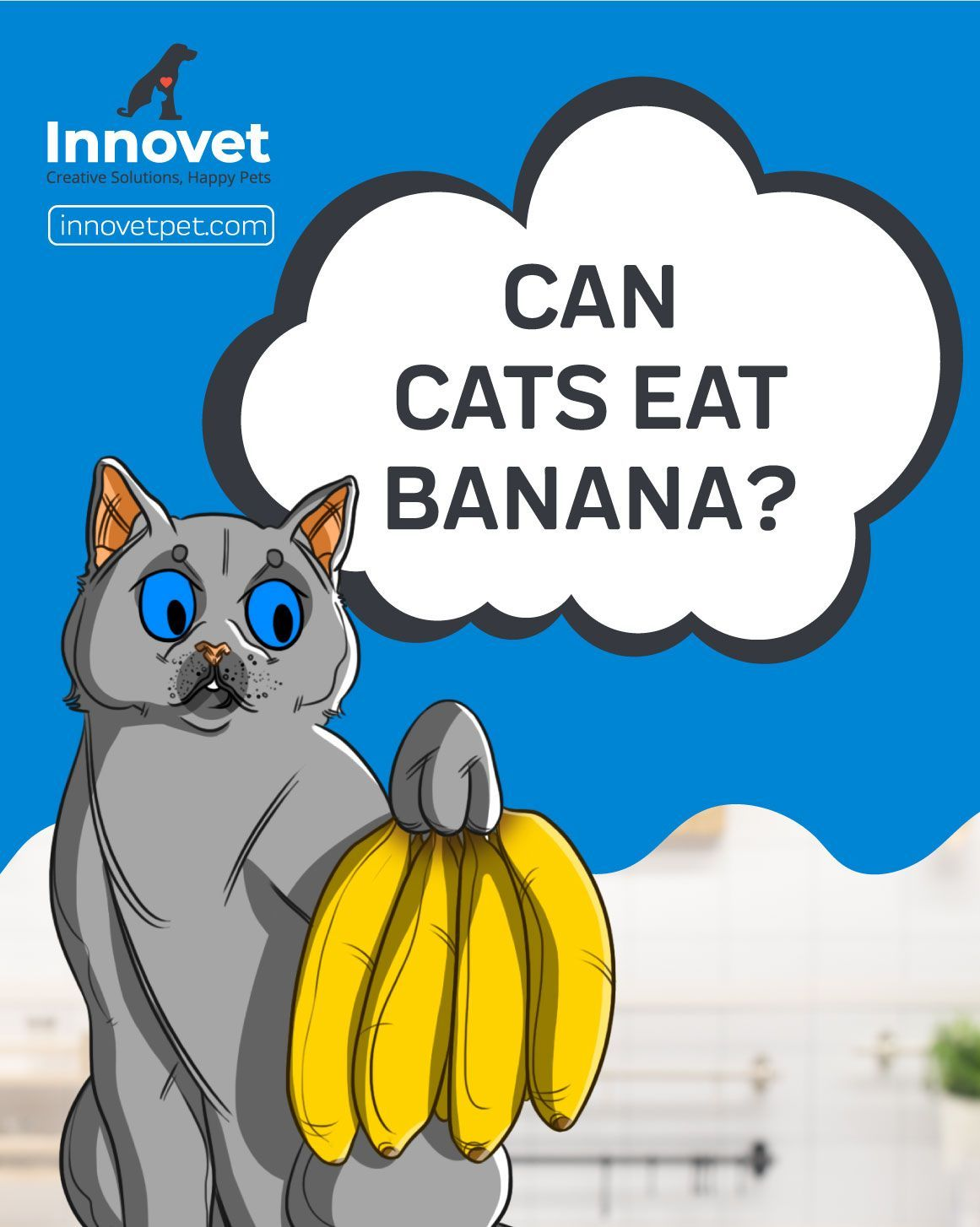 Can my cat eat a banana? Well, bananas are a highly sought