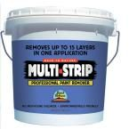 1-gal. Multiple Layer Paint and Varnish Remover