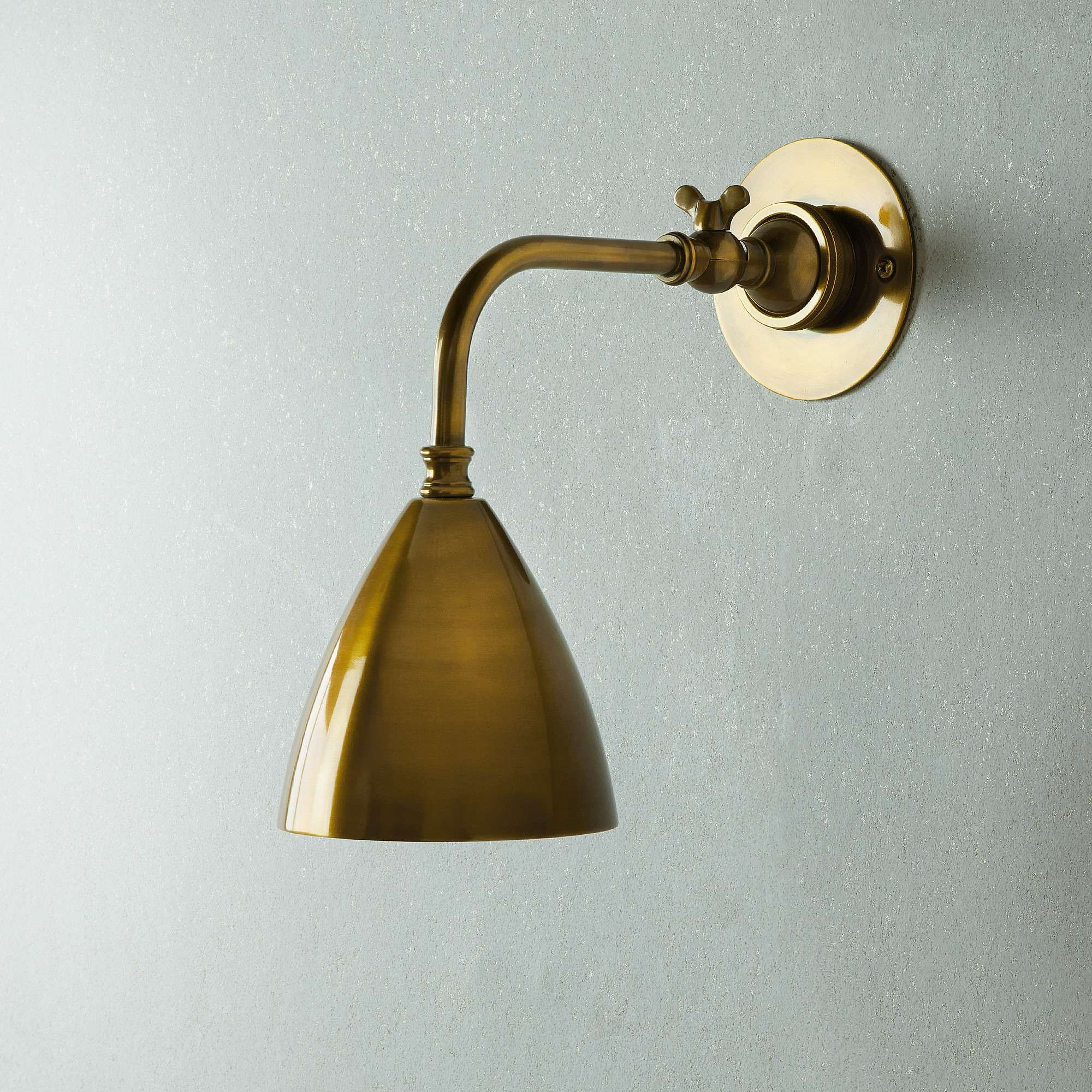 Clematis Wall Light in Antiqued Brass