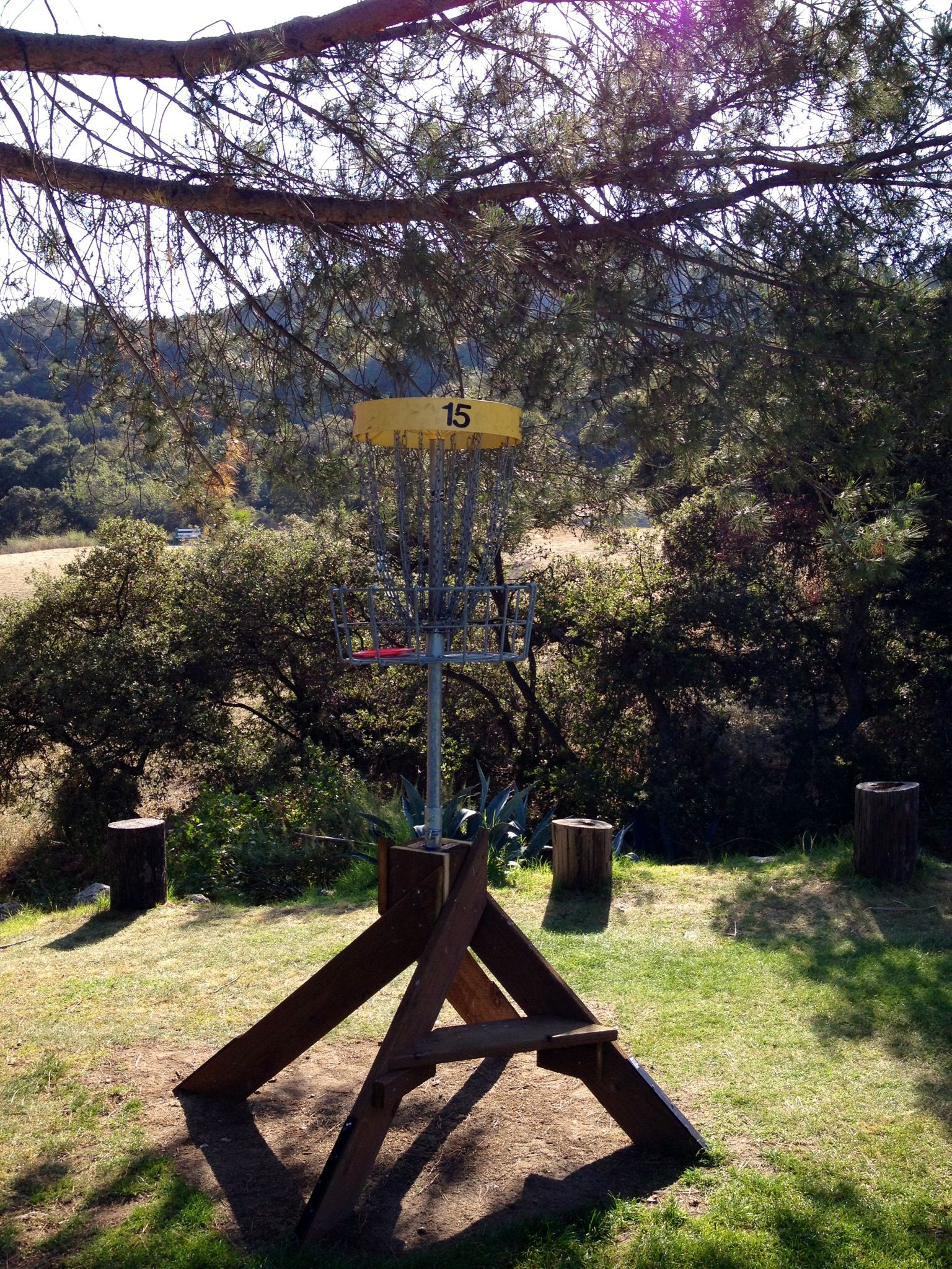 Elevated basket with a twist disc golf disc golf courses