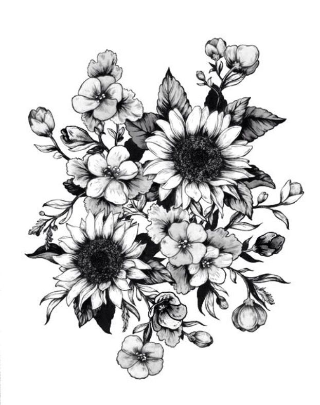 image result for sunflower drawing drawing inspirations