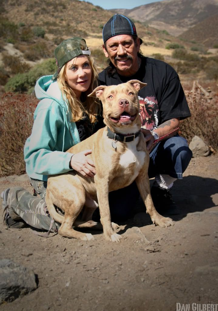 Danny Trejo With His Wife And Their Pitbull Rescue Personal Friends