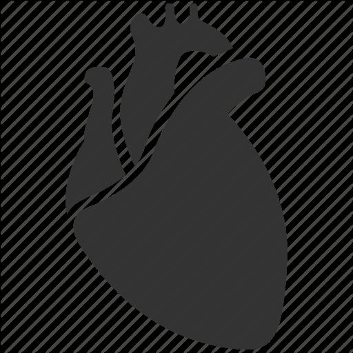 Heart Organ Icon Google Zoeken Heart Icons Heart Organ Medical Icon