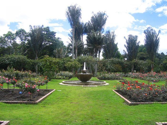 Jardín Botánico José Celestino Mutis | LUGARES | Jardin botanico ...