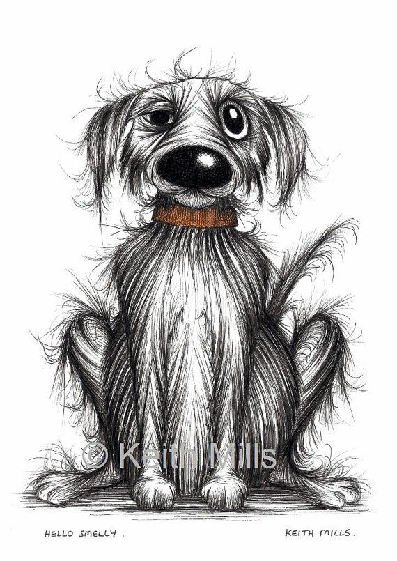 Hello Smelly Print download Miserable pet dog pooch with a grumpy face and smelly coat Horrid doggie in need of a bath Amusing funny picture