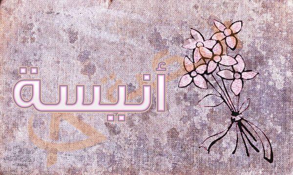 معنى اسم أنيسة Anissa في اللغة العربية اسم أنيسة من أسماء البنات التي أطلقت من زمن قديم فهو من الأسماء القديمة ولكنة بدأ في الظهور مر Enamel Pins Enamel Pin