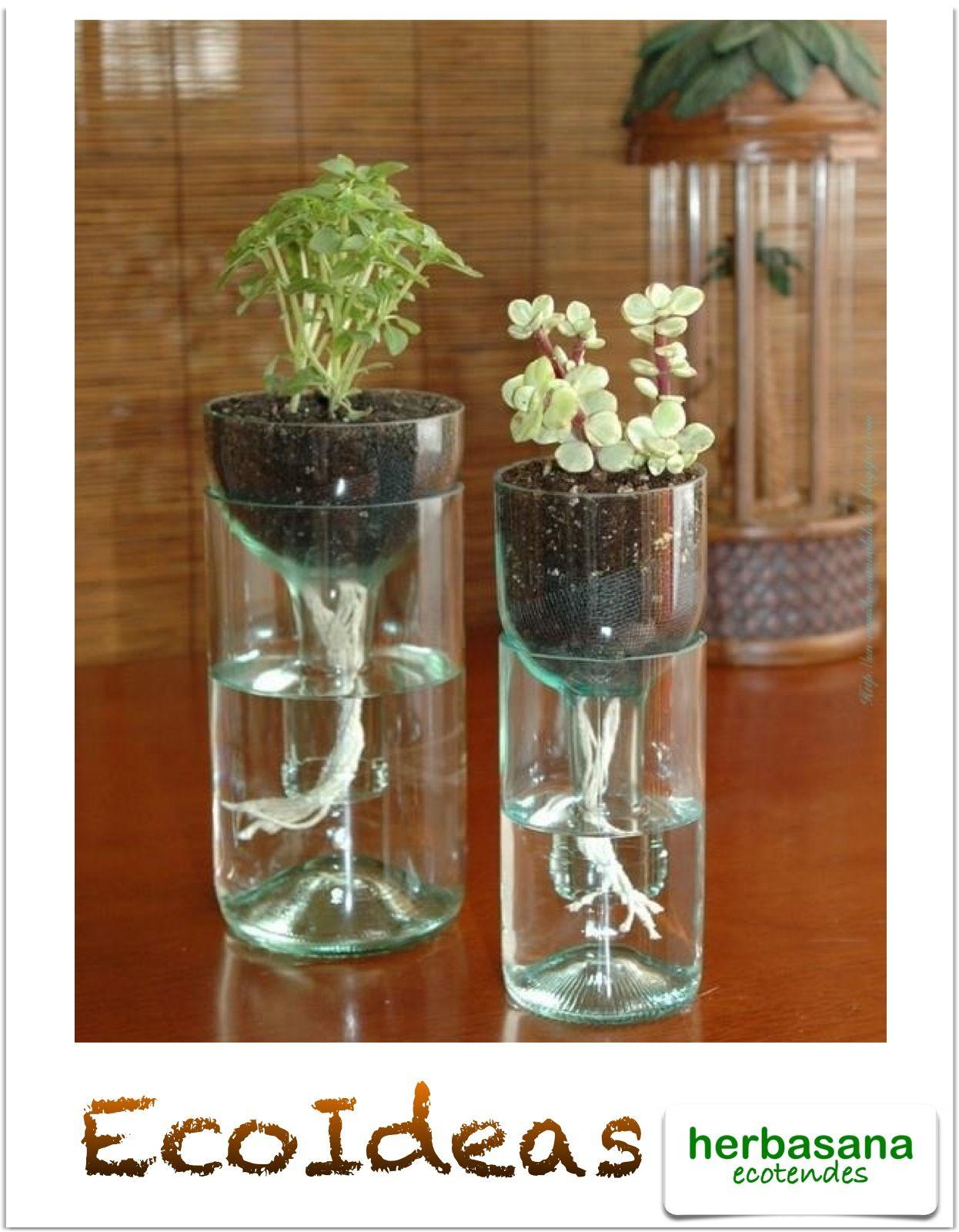 Maceteros con botellas de vidrio vidrio pinterest - Que hacer con botellas de vidrio ...