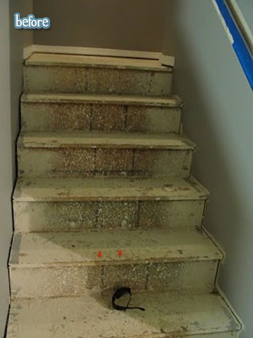 On to business: staircase redos. You've seen them, I've seen them. Maybe, like me, you've wanted to try them too, unless you live in a one story house and then well … just log it away as semi-useful information, I guess. Anyhoo, I'd love to pull up my carpet and find fabulous hardwood stairs to …