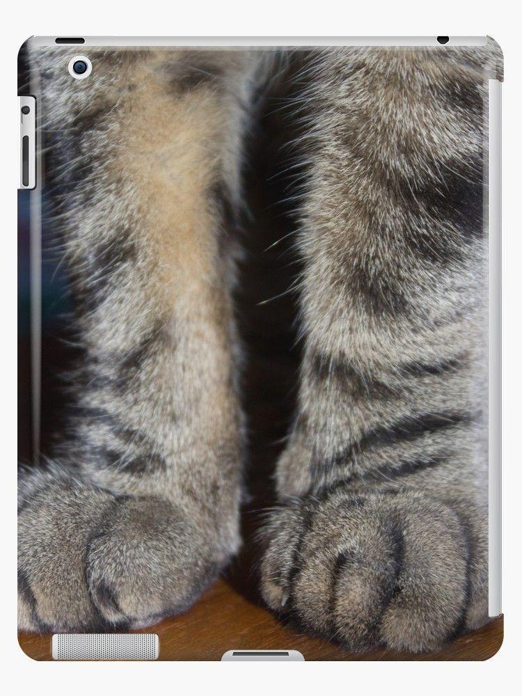 Tabby pawsome ipad caseskin by wisekitty tabby cat
