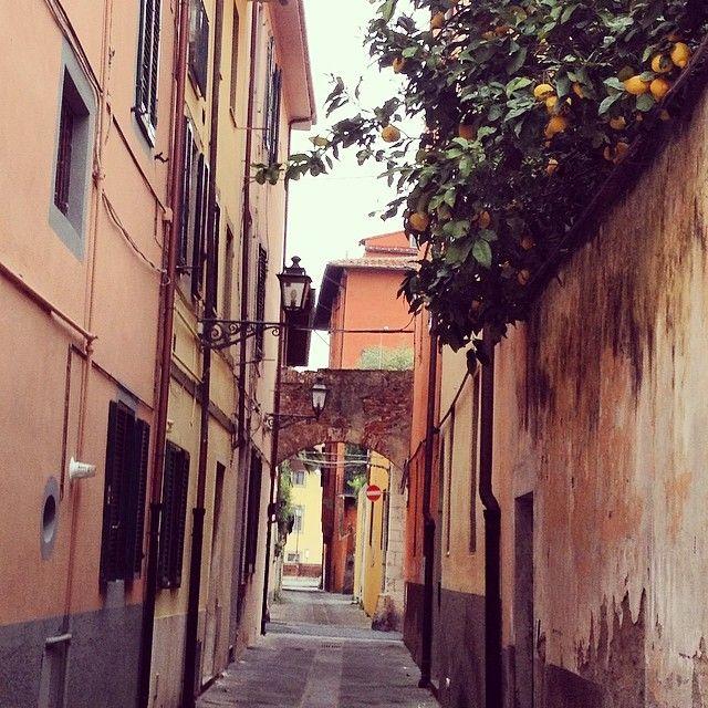 #Pisa nascosta tra i #vicoli del centro