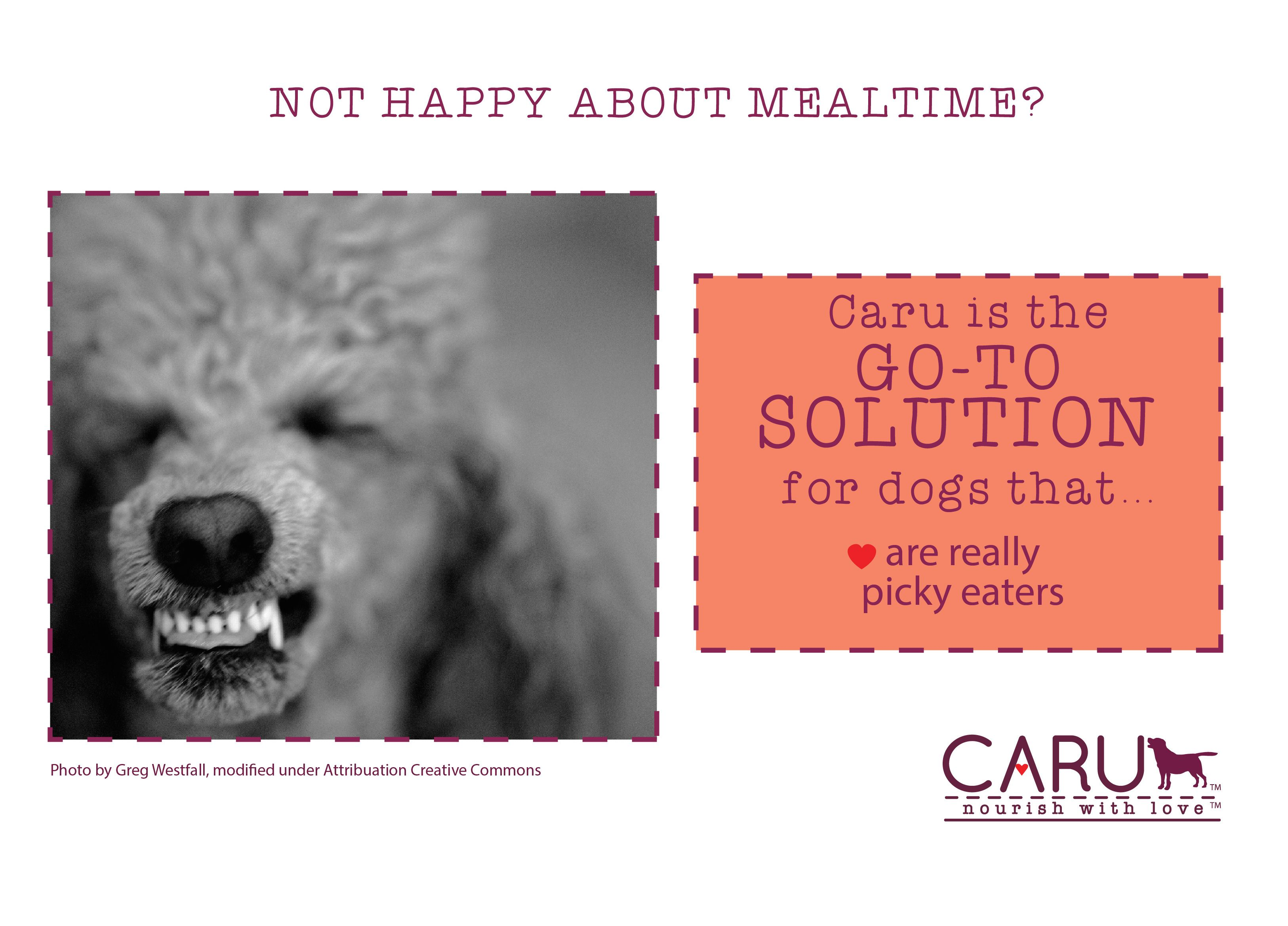CARU is your Go-To Solution for Dogs that are Really Picky Eaters! Learn more at carupetfood.com #pickyeaters #carupetfood