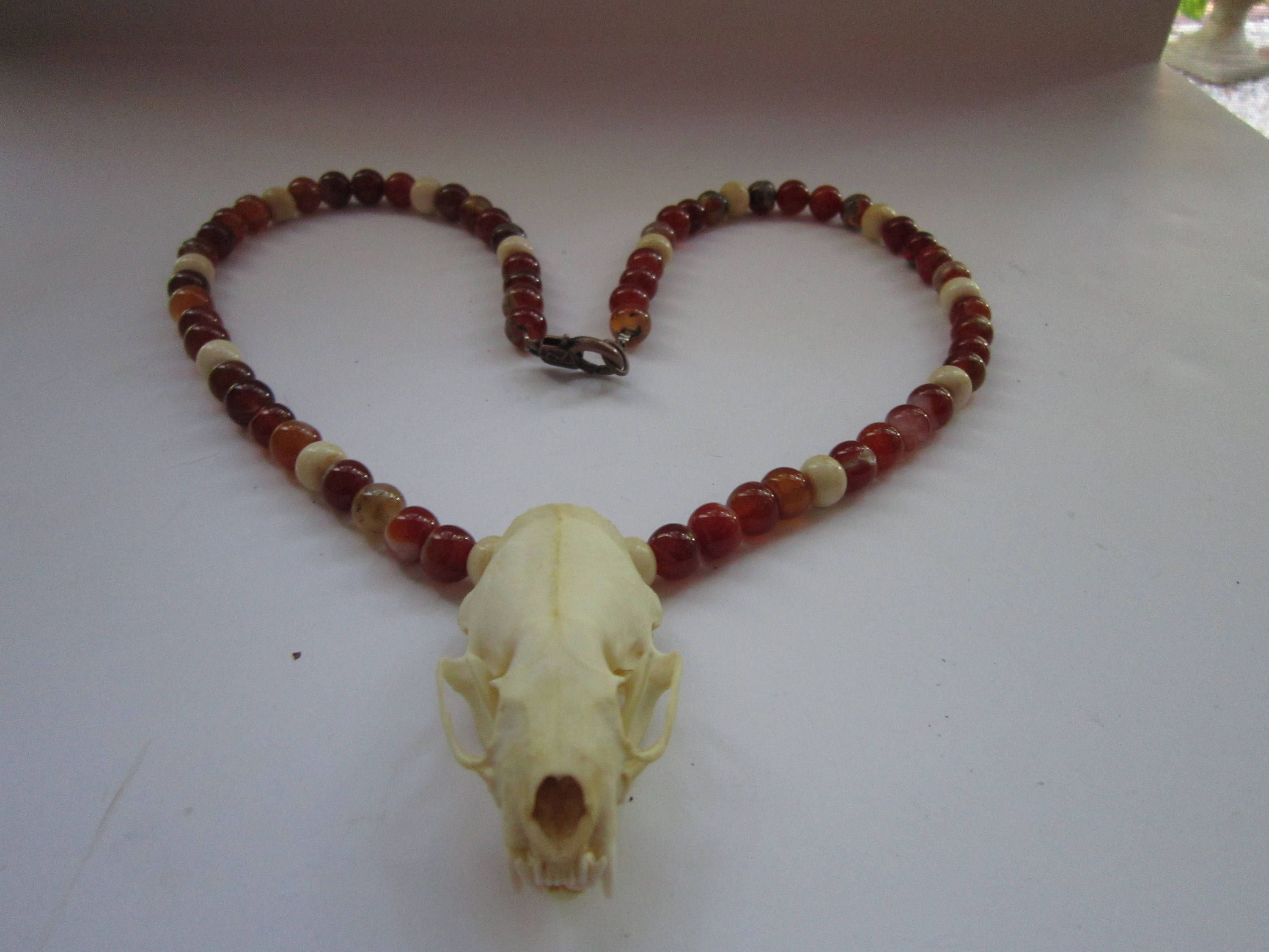 skull vulture bone oddities products small curiousity mouse original jew culture real necklace