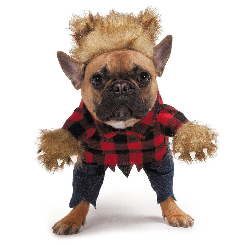 Zack And Zoey Werewolf Dog Costume Cute Dog Costumes Dog