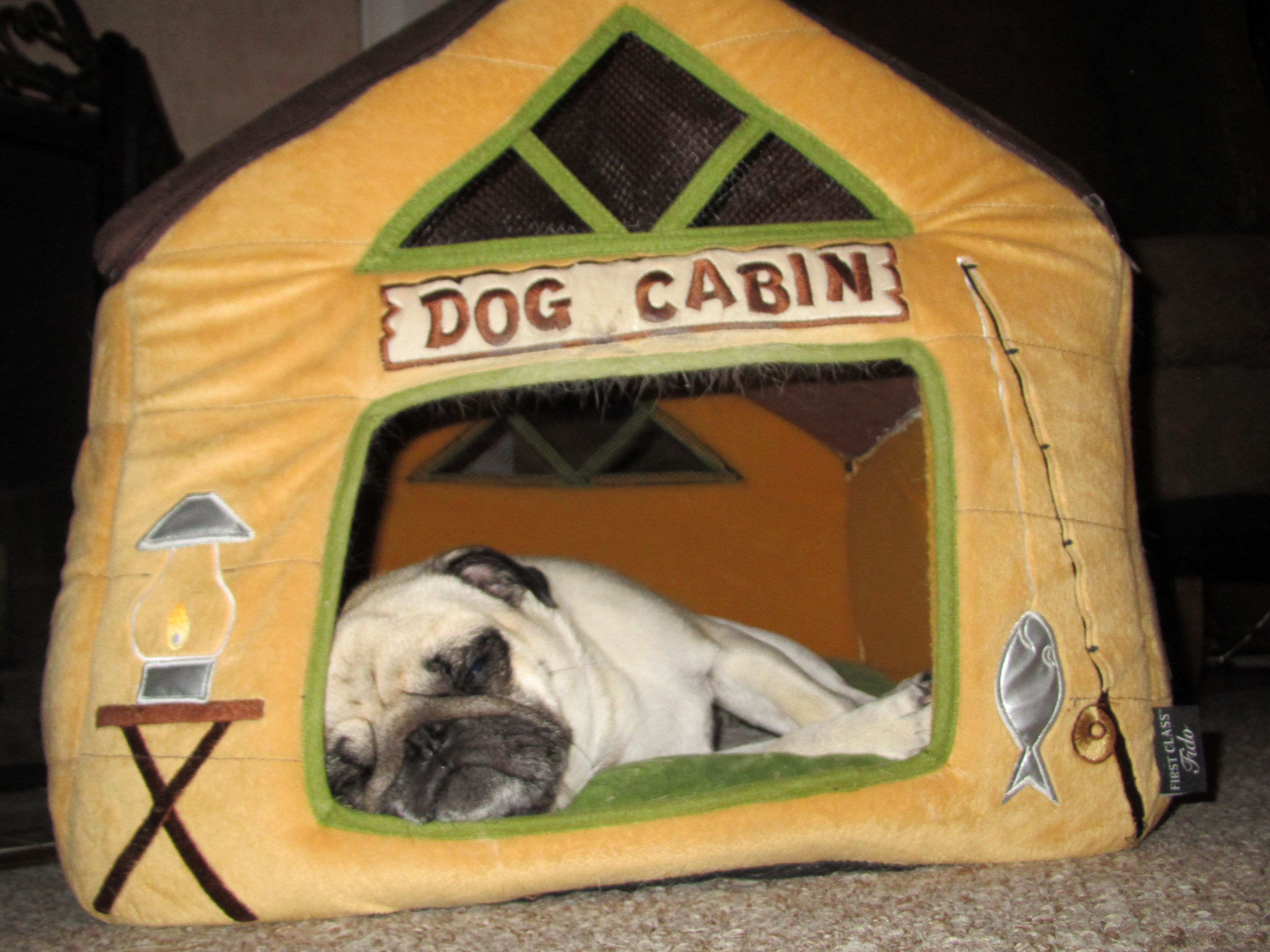 Spanky taking a snooze in his Dog Cabin.