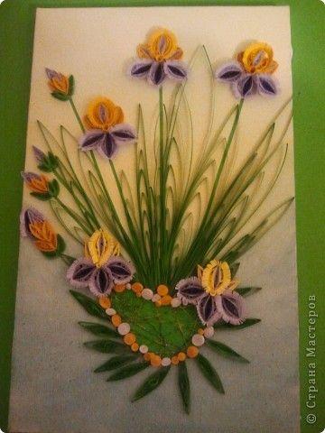 Muurschildering tekenen Quilling Irissen vogelkers gerbera Photo Paper 1