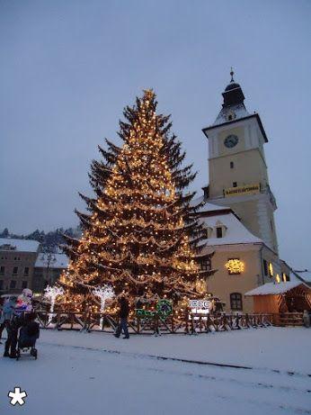 Kostas Kastrinakis - Google+The Christmas tree in the center of Brasov, Romania