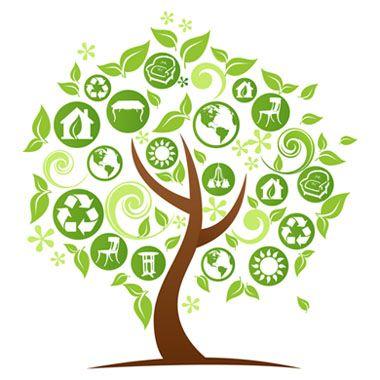 Kristynn Reduce Reuse Recycle