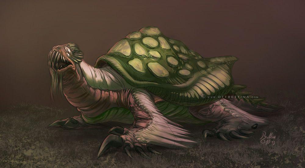 Картинки полу лица полу черепаха личной жизни