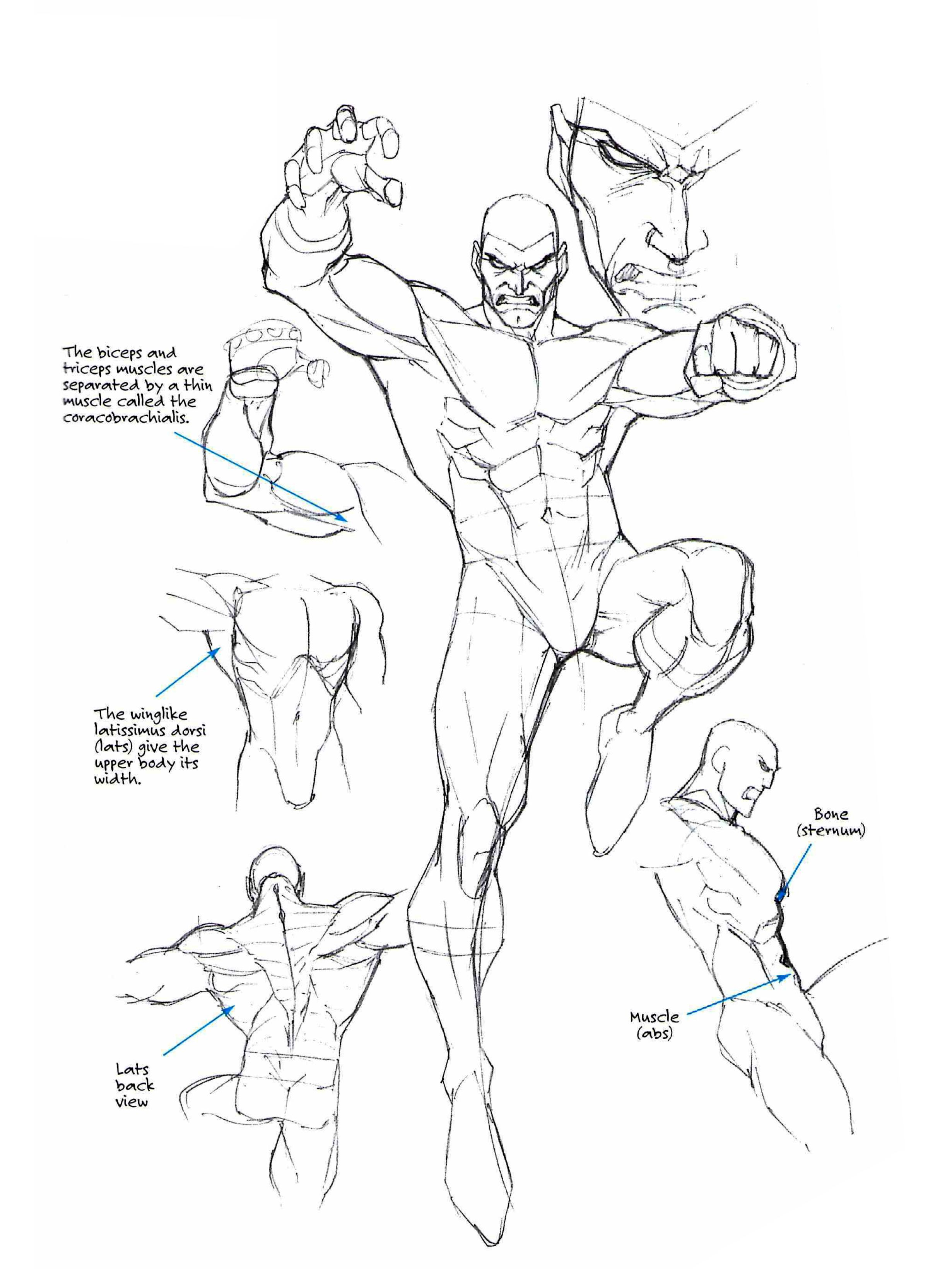 Roger Cruz - Drawing Cutting Edge Fusion | Reference | Pinterest ...