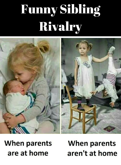 Funny Sibling Rivalry Funny Baby Quotes Siblings Funny Funny
