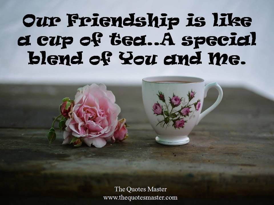 The Quotes Master Friendship Quotes Fb 68 Instagram Captions Best Friend Captions For Instagram Best Friend Captions