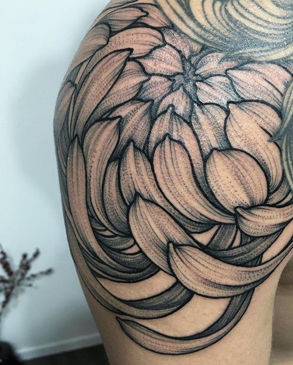 49 Beautiful Chrysanthemum Tattoos With Special Meaning Chrysanthemum Tattoo Crysanthemum Tattoo Irezumi Tattoos