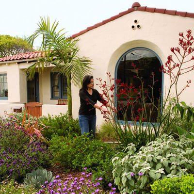 The Front Yard Of Rick Cole Ventura S City Manager Is Blooming Proof Get Planting Ideas From This Southern California Garden