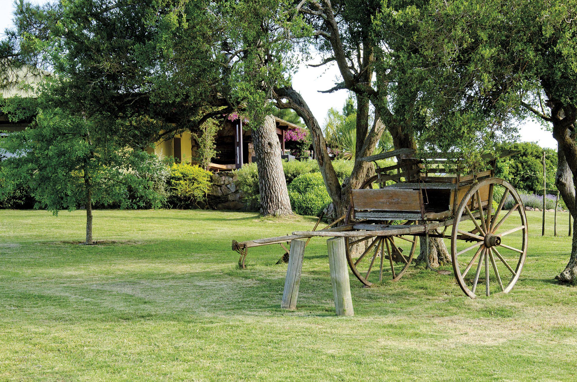 finca turistica ganadera forestal olivicola en las sierras de minas uruguay casa rustica