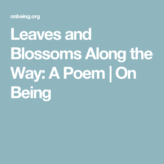 Leaves and Blossoms Along the Way: A Poem | On Being