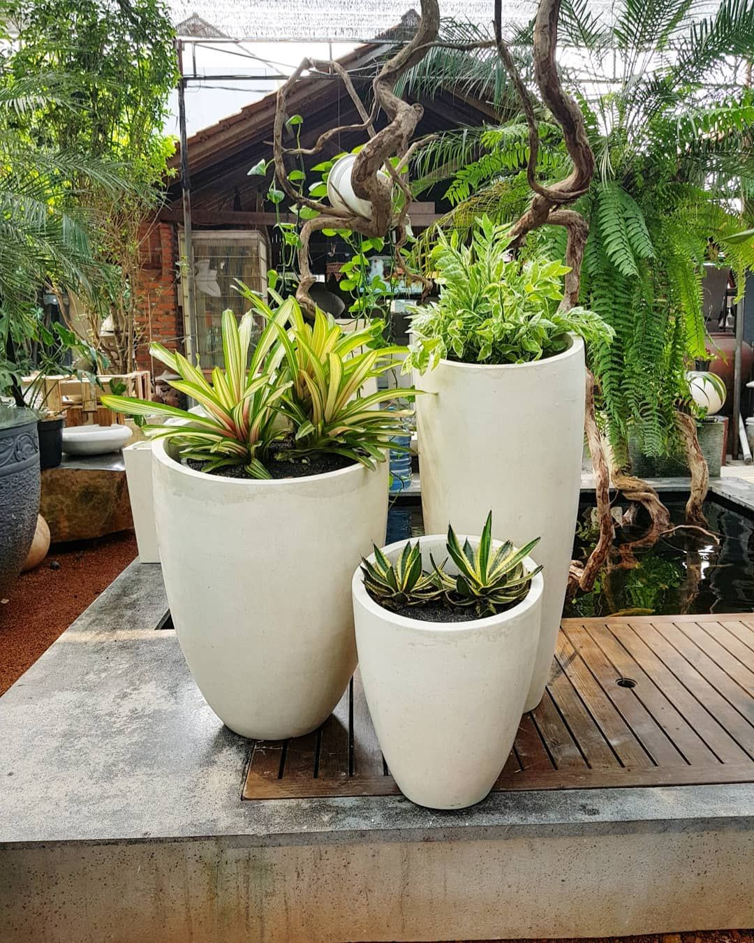 Pot Slant Tall Premium Teraso Pot Tanam Indoor Outdoor Taman