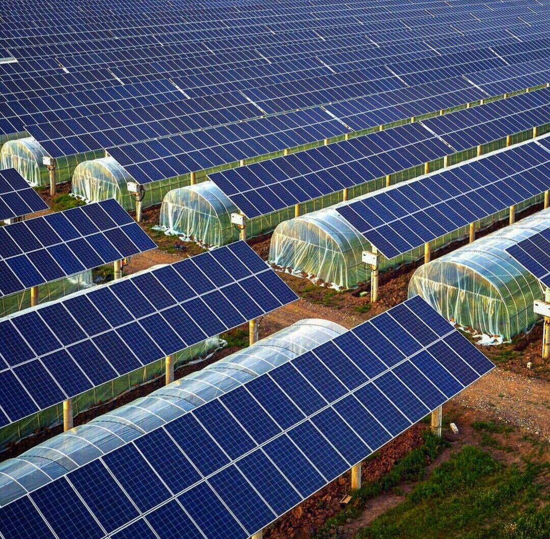Cultivos Con Paneles Solares Con Imagenes Paneles Solares Instalacion De Paneles Solares Jardineria Hidroponica