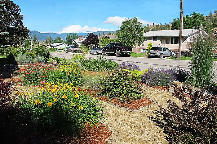 Day lilies, lavender Schools near me, Trade school