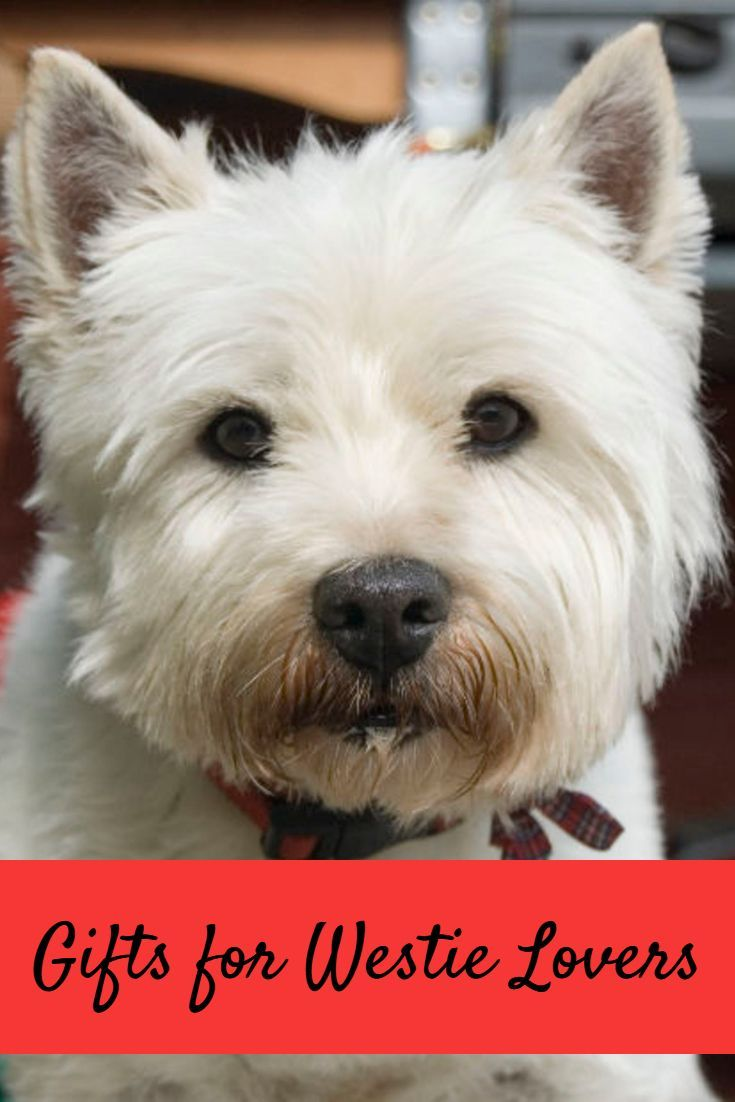 Best Gift Ideas For Westie Dog Lovers 2020 Westies Dog Lovers