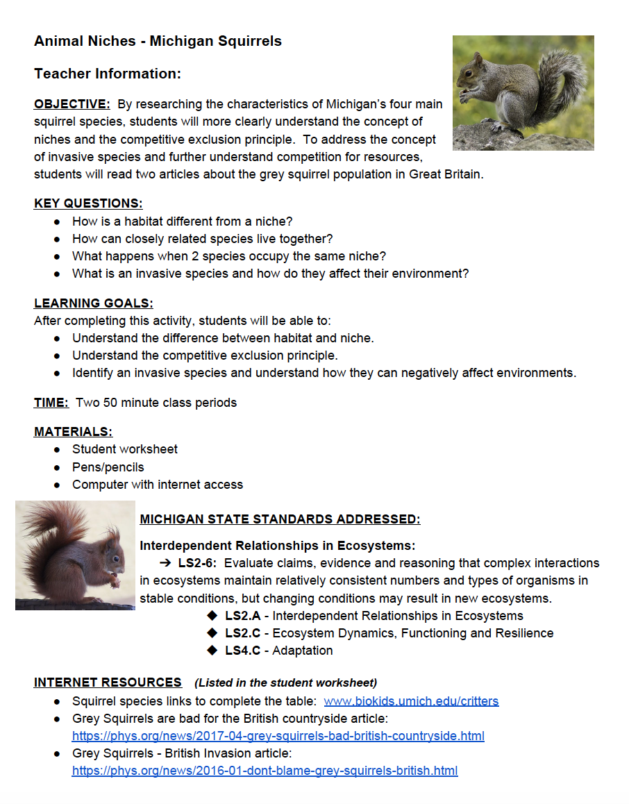 Short Research Activity In Which Students Investigate The Characteristics Of Michigan S Four Main Squirrel Science Cells Principles Of Ecology Squirrel Species