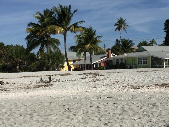 Searching For Treasures Shelling At Blind P Beach Sanibel