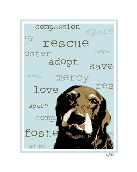 Adopt From A Shelter Or Animal Rescue Save A Life Poster Available 10 00 At Etsy Rescue Dogs Rescue Dog Adoption