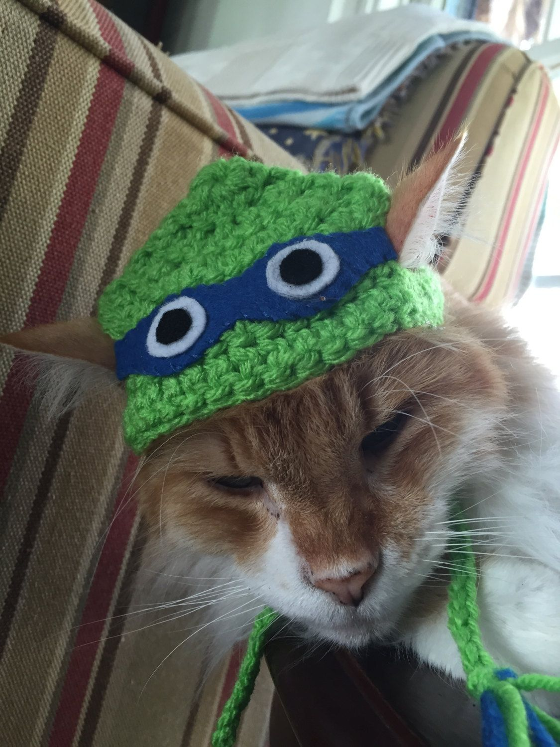 Crocheted Blue Ninja Turtle Hat for Cats by TheBloomingPot
