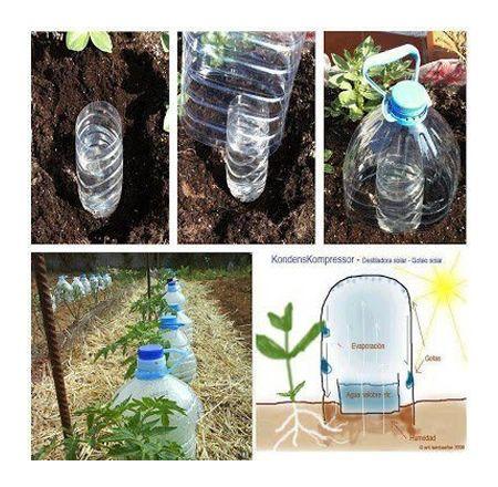 Diy Goteo Solar Drip Irrigation Re Uses Plastic Bottles To